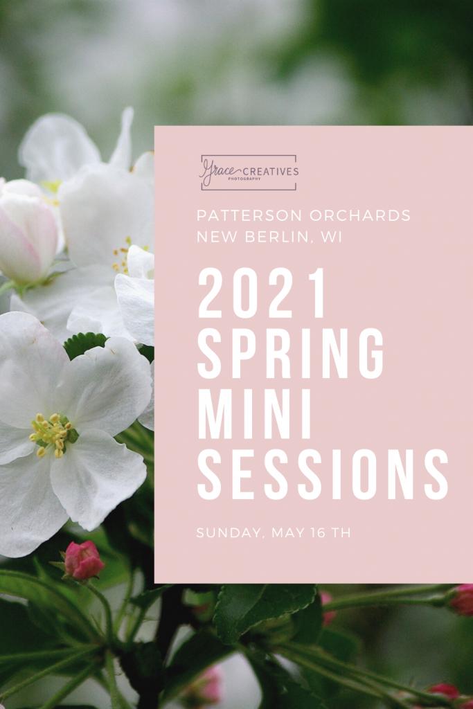 2021 Milwaukee Spring Mini Sessions promo